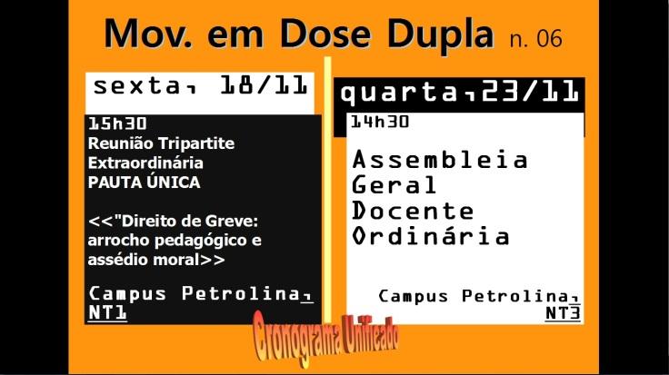 cartaz-a3-dose-dupla-n06