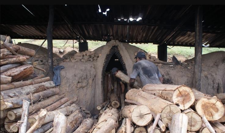 Andes-SN contra o trabalho escravo
